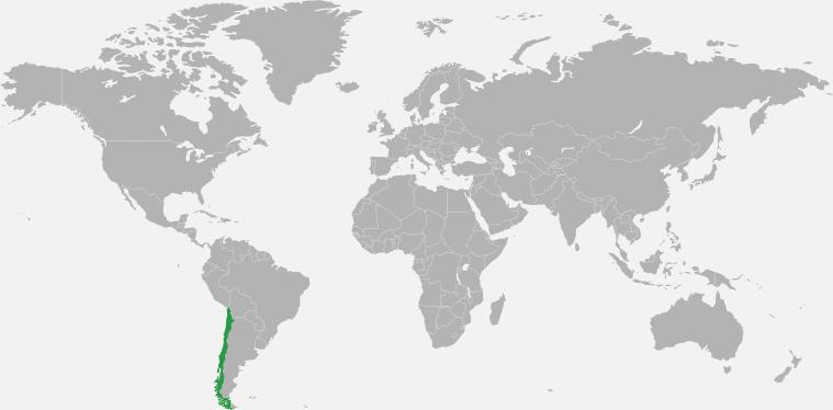 Mapa Tw1